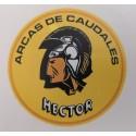 Recanvi Hector Sanson